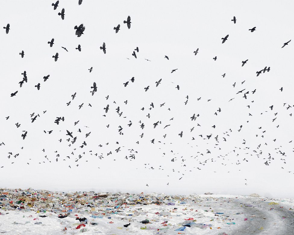 Dezső Tamás: Dump, 2012