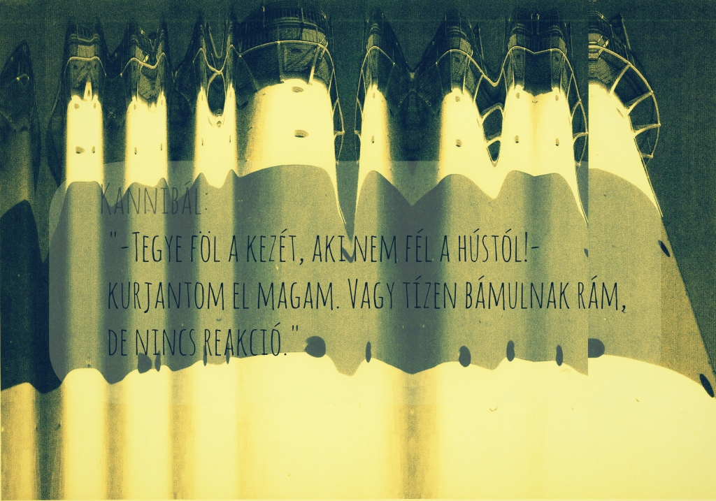 hazibuli_4_01k