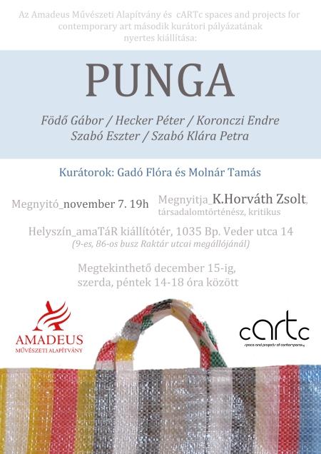 Punga_flyer