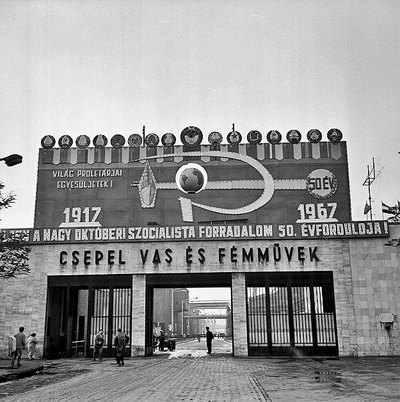 csepel-timi1
