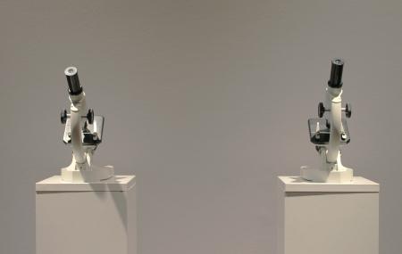 Asztalos Zsolt: Két portré és Bárány Glóriával installációja, 2006, kép forrása: a szerző fotója
