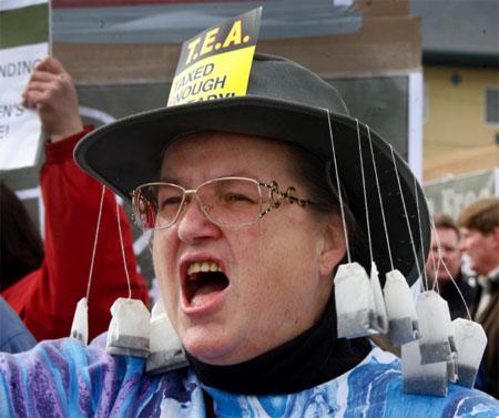 Tea Party-aktivista, fotó: http://concisepolitics.com