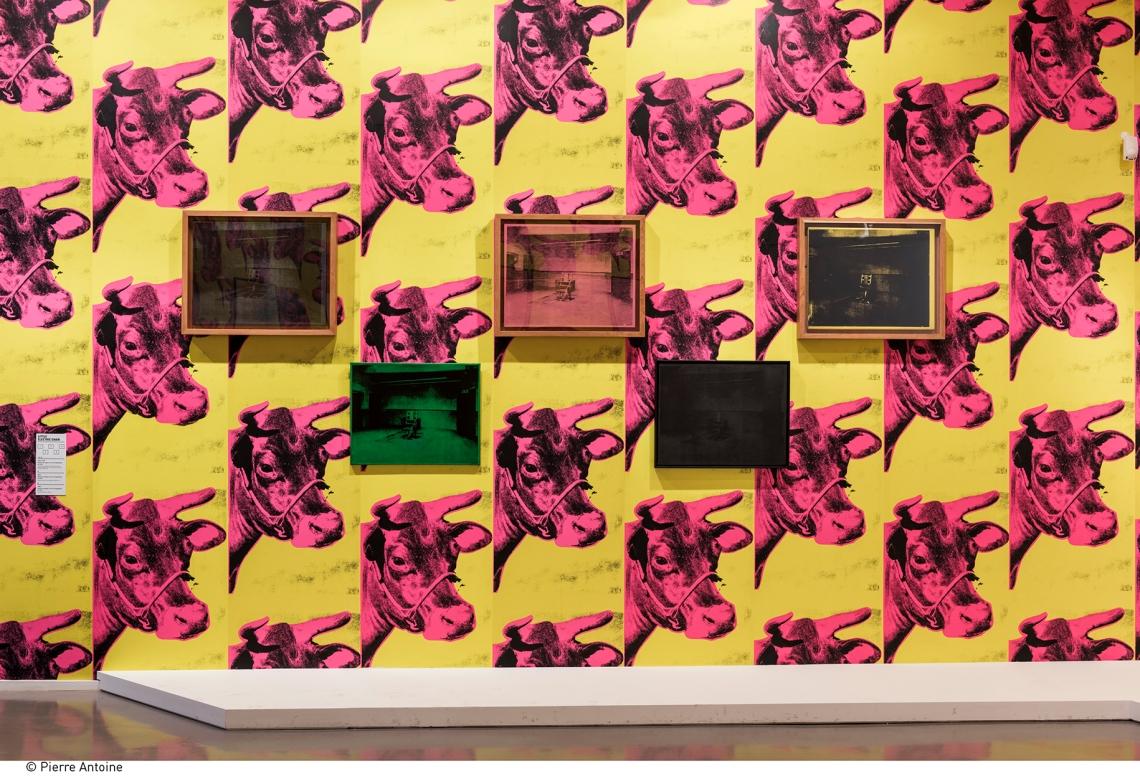 Tehén-tapétás kiállításenteriőr a Villamosszék-széria néhány tételével, fotó: Pierre Antoine