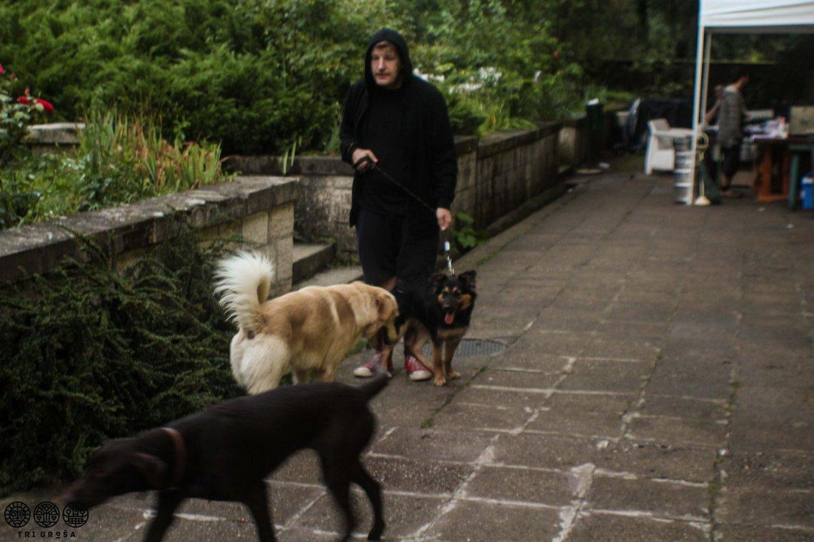 andre-ferenc-kutyak